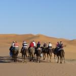 Ritt in die Sandwüste
