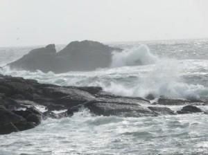 Sturmgepeitschte Küste