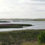 Typische Insellandschaft