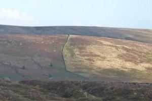 Dartmoor-Heidelandschaft