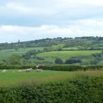 Tiefgrünes Irland