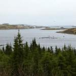 Red Bay-Labrador