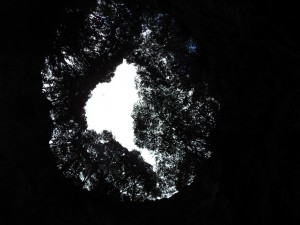 Höhlenausblick