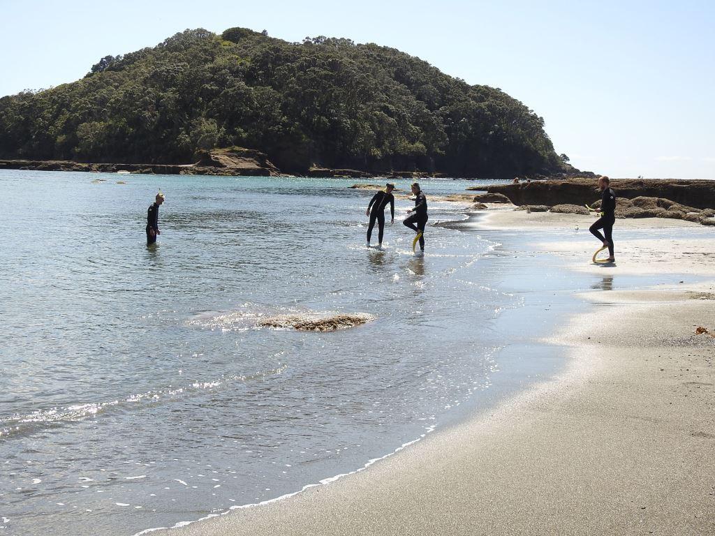 Leigh-Goat Island
