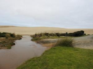 Te Pake Sand Dunes DSCN1557