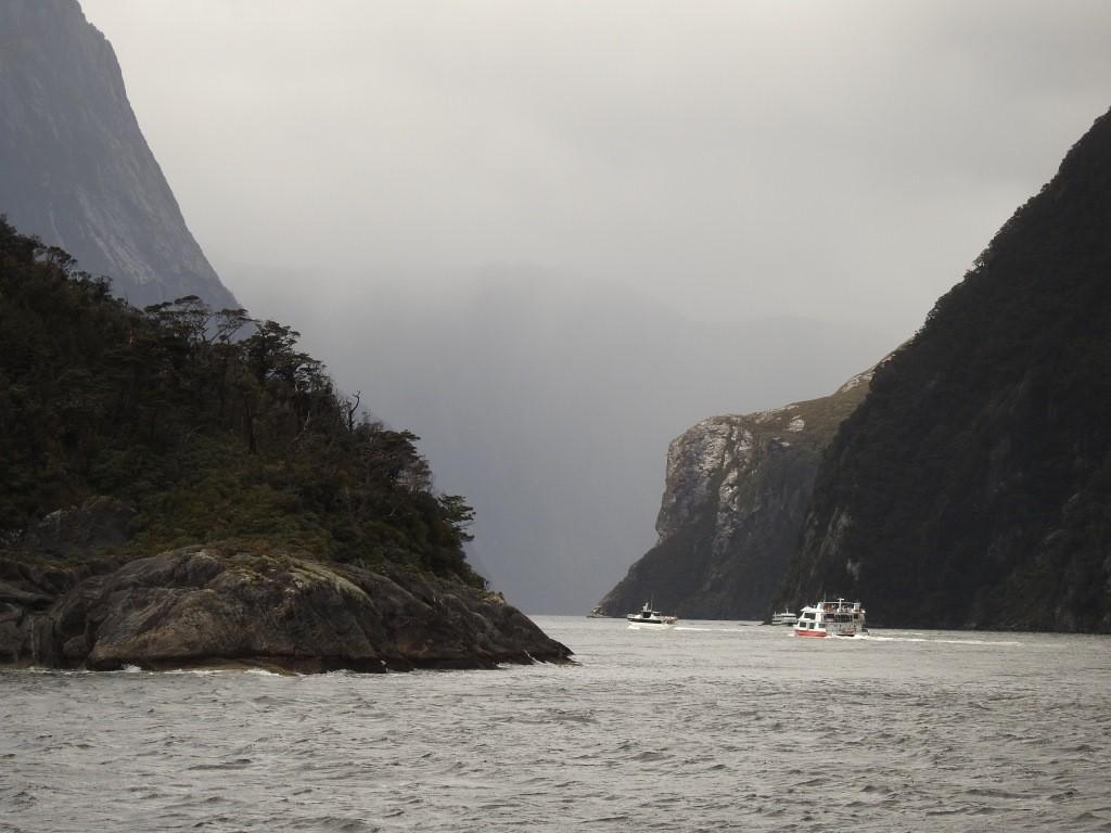 Milford Sound-Reges Treiben