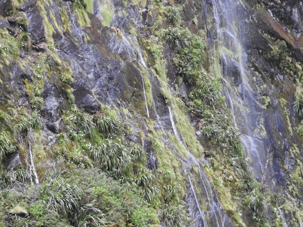 Wasserfälle wie Spinnweben