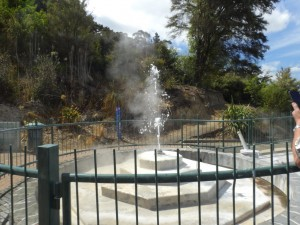 Klein aber Fein-Geysir in Te Aroha