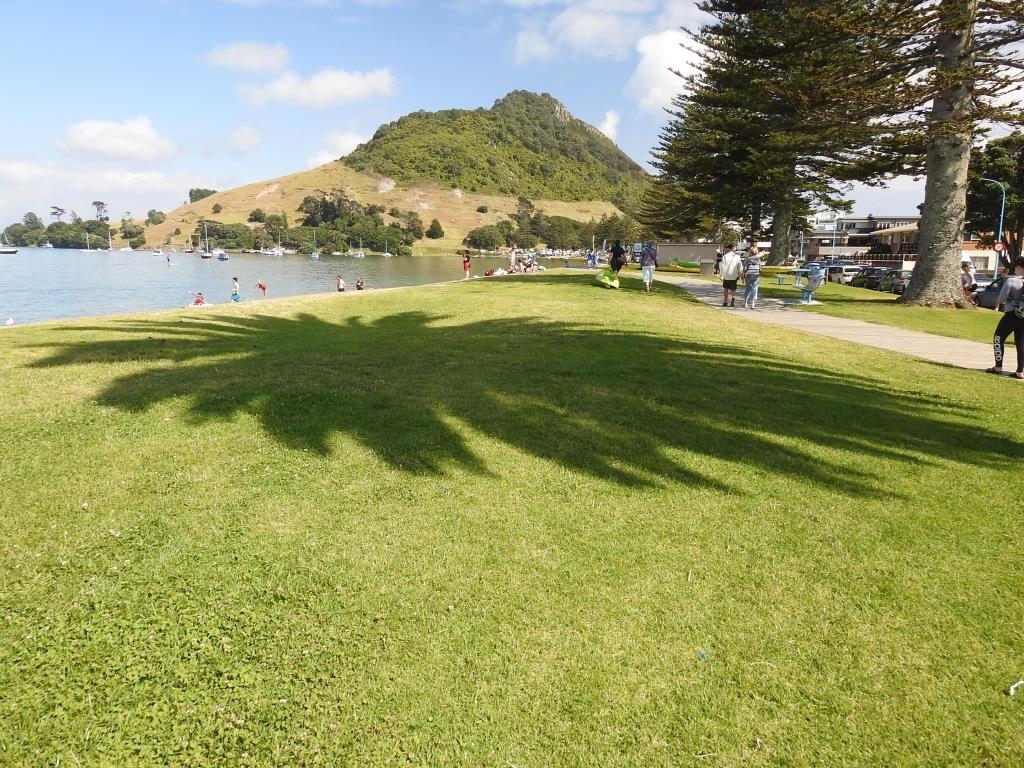 Bay of Plenty-Tauranga