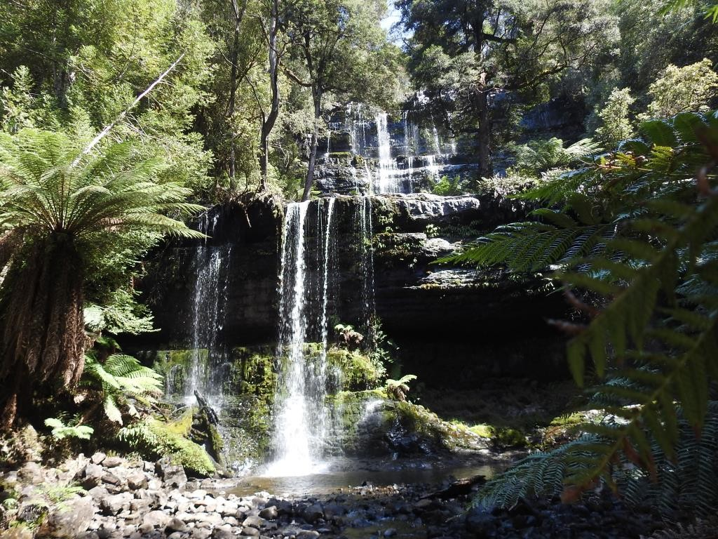 Mt. Field NP Russel Falls